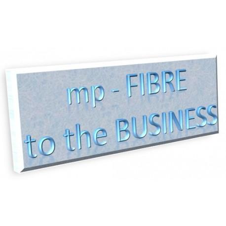 Fibre To The Business